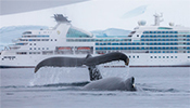 Discover the world with Seabourn