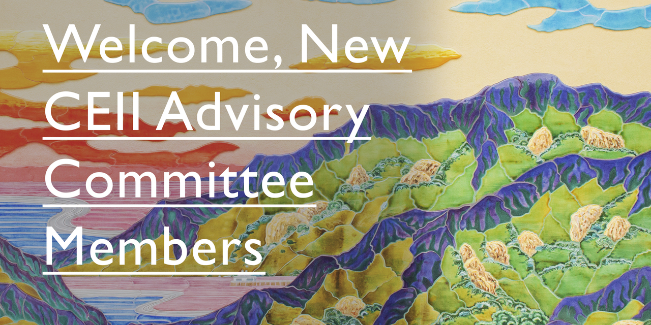 Welcome New Members of the CEII Advisory Committee